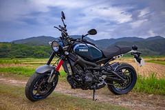 俺 の XSR900 - 8 (Cheng-Xun Yang) Tags: xsr900 yamaha xsr mtm850 バイク ヤマハ motorcycles