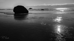 Oregon Coast #4 (Perry J. Resnick) Tags: pjresnick perryjresnick pjresnickgmailcom pjresnickphotographygmailcom ©2018pjresnick ©pjresnick nature light fuji fujifilm atmosphere atmospheric digital shadow texture shadows angle perspective naturallight white xf fujinon resnick outdoor rectangle rectangular sky clouds xpro2 fujifilmxpro2 landscape blackandwhite bw monochrome monochromatic oregoncoast tones gray grey layers sand beach ocean sea water seaside 16mm fujinonxf16mmf14 16mmf14 silhouette wave pacificocean bay rock 16x9 oregon