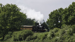 Can't See the Wood for the Trees (McTumshie) Tags: 20180520 bluebellrailway eastsussex maunsell no30541 qclass southernrailway branchlineweekend gala heritage locomotive railway steam train sharpthorne england unitedkingdom