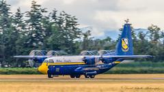 "Blue Angels C-130T ""Fat Albert"" (dschultz742) Tags: 08112018 abbotsford abbotsfordinternationalairshow airshow airplane d810 aircraft nikon nikonsigma outdoor sigma vehicle c130t fatalbert blueangeles propvrotices"