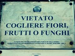 divieto (annalobergh) Tags: fiori frutta funghi divieto cartello villasorra castelfrancoemilia emiliaromagna cartelli avviso italia