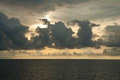 DSC_0232 (yakovina) Tags: silverseaexpeditions indonesia papua new guinea island tambrauw