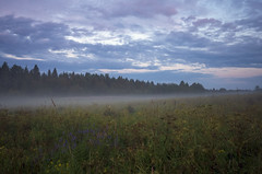 The endless beauty of nature. (vazek2007) Tags: nature russia fog clouds sky landscape forest ricoh ricohgr