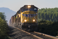 A 7-unit local (Tom Trent) Tags: junctioncity oregon unitedstates us sd70m dash944cw ge emd diesel freight local up unionpacific meadowview swainturn