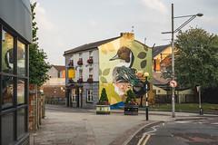 Blackburn Open Walls (stetoppingphoto) Tags: street art blackburn