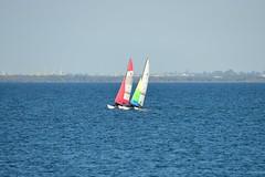 800_4737 (Lox Pix) Tags: queensland qld australia catamaran trimaran hyc humpybongyachtclub winterbash loxpix foilingcatamaran foiling bramblebay sailing race regatta woodypoint boat