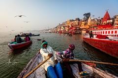 Kashi, the City of Light (Varanasi, India 2015) (Alex Stoen) Tags: alexstoenphotography benares birds boat canon ganges geotagged india rowing sunrise travel vacation varanasi water city