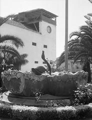 img174 (foundin_a_attic) Tags: plazadelaiglesia puertodelacruz tenerife fuentedelcisne brunnen schwan teneriffa