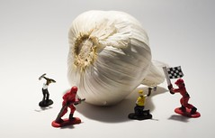 My new lightbox - Garlic, pit workers, and a miner. (Darny) Tags: toys garlic lightbox mireasrealm darny