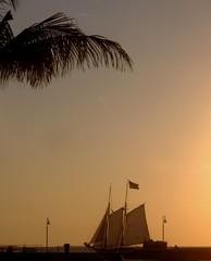 (Veee Man) Tags: ocean sky sun inspiration west tree water evening key paradise ship florida flag dream peaceful calm palm sail schooner 10up3