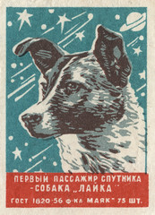 russian matchbox label (maraid) Tags: dog russia space label laika 1950s packaging russian matchbox sovietunion 1959 spacedog spacerace sputnikii