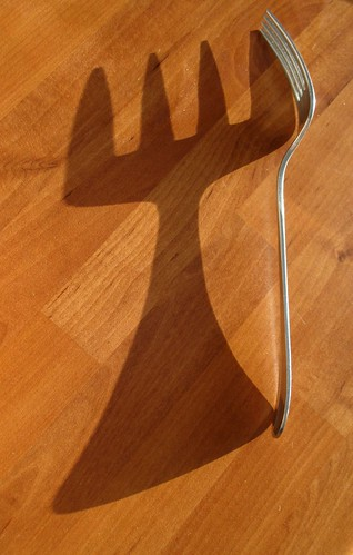 Shadow of fork