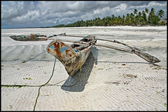 Colors of Zanzibar (sistereden2) Tags: beach boat sand zanzibar lowtide trimaran paje ngalawa lpvehicles