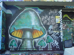 Graffiti: Mushroom - by Franco Folini