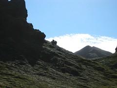 IS36 (Marco_Traverso) Tags: ice trekking trek landscape island lava iceland moss glacier islande hekla islanda icelandtrekking fjallabak
