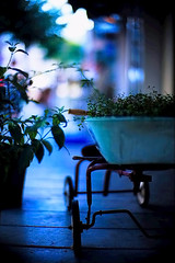 #01 in the gathering dusk (moaan) Tags: leica blue 50mm cafe twilight dof bokeh 2006 f10 kobe rest noctilux leicam7 m7 rvp fujivelvia 600pm fujirvp endoftheholiday gettyimagesjapanq1 gettyimagesjapanq2