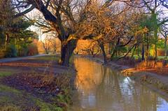 Stripes of gold (~Glen B~) Tags: park uk wow nikond70 dusk cleveland teesside locke redcar tamron28300mm satelliteportfolio