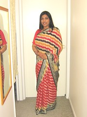 Sari (Princess_Fi) Tags: bollywood sari