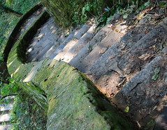 Stairs II (NOVA JIM) Tags: trees green philadelphia leaves stone stairs forest moss woods steps pa canon350d winding philly canonrebelxt wissahickon fairmountpark valleygreen thecontinuum