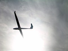 UK Grand Prix '06 5 (andyt1991) Tags: plane airplane flying competition aeroplane gliding glider sailplane