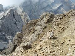 DSC03200 (David Domingo) Tags: espaa mountain france spain huesca pyrenees pirineos ordesa pirineus pirineo gavarnie pirineu aragn sep2006 marbore