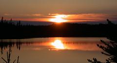 Northeastern Sundown (Rexton) Tags: 2002 orange sun reflection tag3 newfoundland reflections pond tag2 tag1 catchycolours sundown nl gander