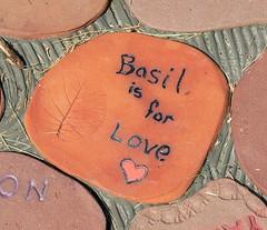 Basil <3
