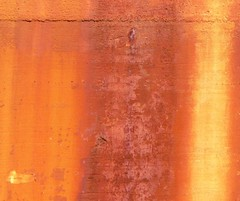 P1100201a (imaphotog) Tags: orange rust phildadelphia philadelphiapa interestingness205 i500