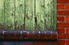 Avocado and Chilli Wall (Ruben Mascar Photography) Tags: canon australia upskirt canon30d mustang1430 terriseymour terryseymour