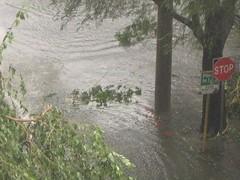 IMG_1416 (Mykl Syco) Tags: canon aftermath flood philippines powershot disaster makati typhoon pilipinas syke dolero a410 bagyo milenyo