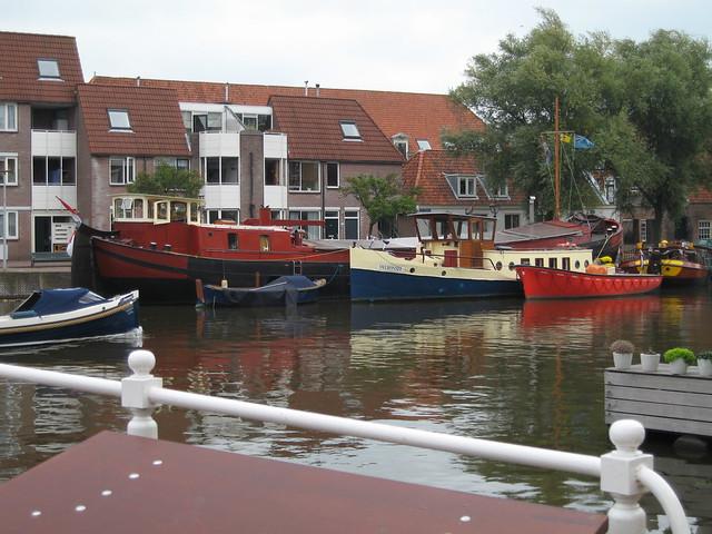 Boatanic garden