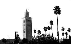 Architecture and Nature..( Arabic Style ) (Harraz) Tags: palms minaret palm morocco maroc marrakesh harraz kutubeya harrazphotography