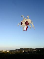 Fsm and gospel (winona) Tags: holiday monster book flying uv science plush fsm flyingspaghettimonster spaghetti gospel janekim noodlyappendages