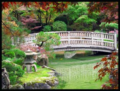 Little Bridge to? (Carplips) Tags: bridge autumn water japanesegarden pond spokane foliage manito 84points