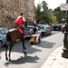 mean streets and a horse even worse
