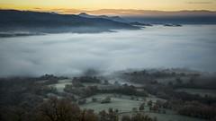 Foggy morning. (JESS PUIGMART) Tags: niebla boira fog morning sunrise light landscape huesca ribagorza arn pirineus pirineos pyrenees fall otoo tardor autumn outono automne
