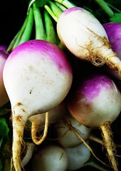 just off the turnip truck