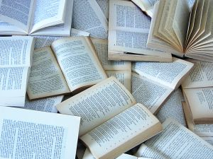 107467_books