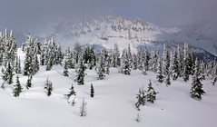 Jumbo pass view (xtremepeaks) Tags: deleteme5 winter deleteme8 snow canada ski mountains deleteme deleteme2 deleteme3 deleteme4 deleteme6 deleteme7 saveme skiing bc deleteme10 panasonic backcountry purcells interestingness223 i500 dmclx2 abigfave explore08mar07 deletedbydm