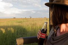 Can you spot the lion? (Hector16) Tags: pantheraleo lamai eastafrica tanzania serengeti wildlife nature