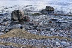Strokes and circles (liisatuulia) Tags: bylandet porkkala kallio kivi meri saaristo archipelago sea