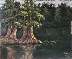 Plein air, pastels (sharivahidi) Tags: river landscape pastels painting pleinair