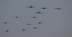 1017 (kevan r) Tags: balbo flying legends duxford aircraft