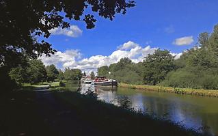 le long du canal du Rhône au Rhin