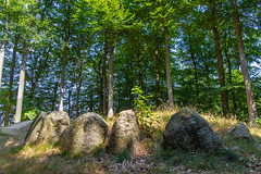 Around the dolmen (JanMNielsenPhoto) Tags: dolmen blommeskobbel als earthinbalance iamnordic visitdenmark opdagdanmark natur naturfoto nature naturephotography nikon nikonphotography d7200 tamron prehistory stones woods forest viewbug