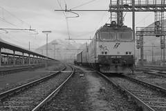 domo II set 69 #20 (train_spotting) Tags: beuracardezza domoii tigre tigrone e652029 trenitaliacargo trenitalia ticargo divisionecargo mir merciitaliarail nikond7100