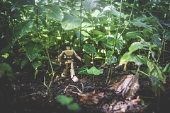 225/365 - The Jungle (Forty-9) Tags: photoaday 13thaugust2018 thejungle 2018 day225 forty9 3652018 365 efs1785mmf456isusm tomoskay lightroom efslens canon stikfas 225365 eos60d 13082018 project3652018 monday minufigure project365 august
