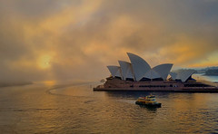 Sydney Sunrise (missgeok) Tags: sunrise sydney australia sydneyoperahouse morning aussiesunrise harbour sky cloudy clouds ferry day goodmorning fireinthesky bestviews bestcity ilivehere