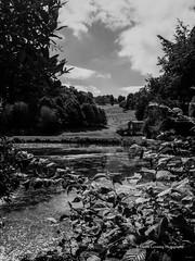 Bath Prior Park 2018 08 02 #16 (Gareth Lovering Photography 5,000,061) Tags: bath prior park nationaltrust gardens palladian bridge serpentine lakes viewpoint england olympus penf 14150mm 918mm garethloveringphotography