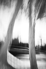 the spirits above (ChrisRSouthland) Tags: trees blackandwhite monochrome schwarzweiss bw leicammonochrom leicaelmarit28mmf28 icm intentionalcameramovement dynamics triangle above spirits
